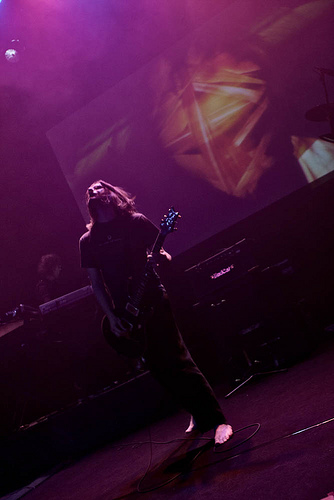 Porcupine Tree by Adam Wills